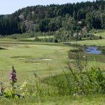 Holma Golf